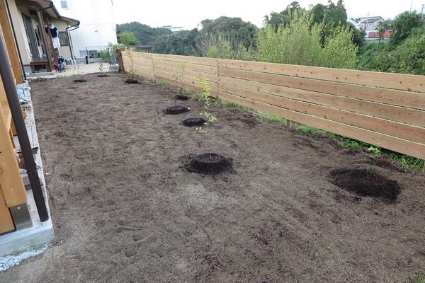 -庭造りことはじめ その7- 植えた